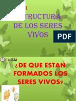 Apunte-1 Estructura de Los Seres Vivos Nb5cna1 1