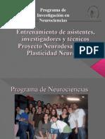 Bienvenida introducción Proyecton Neurodesarrollo y Plasticidad