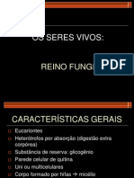 fungos (1)
