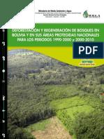 deforestacionMUSEO-SERNAP.pdf