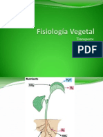 Fisiología Vegetal