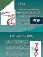 DNA diap