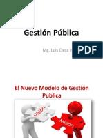 Gestion Publica 2