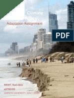 ccp adaptationassignment