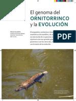 Ornitorrinco.pdf