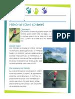 co6.pdf