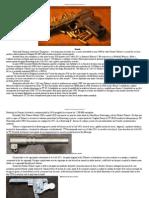 175323603 Pregătirea Profesională Pistolul TT 1