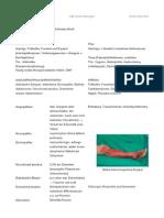 Derma Diabetes Handout
