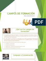 Campos de Formación.pptx