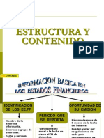 Estructura y Contenido Nic i (1)