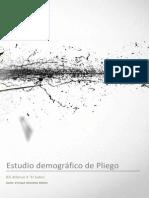 Estudio Demográfico de Pliego