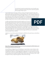 bibliography  final paper 1