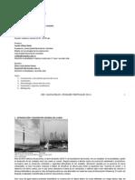 programa publicacion 2014-1 RASCACIELOS(1).pdf