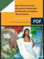 Guia Consejo Tecnico Esc.