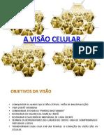A Visão Celular Min 01 Mod 03