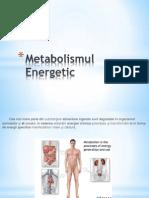 Metabolismul Energetic