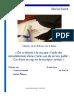 De La Théorie à La Pratique Laudit Des Immobilisations Dune Concession de Service Public Cas Du