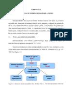 Strategii de Internationalizare