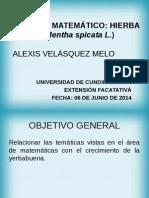 Proyecto Final Matemáticas Alexis