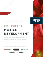 Mobile Development Guide DZResearch 2014