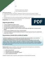 Proyecto 14-3er Grado