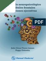 Desarrollo Neuropsicologico de - Julio Cesar Flores Lazaro