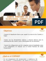 COPASO - Positiva 2009 (29 Diapositivas)
