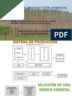 Sistemas Forestales.pptx [Autoguardado]