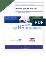 Introducao SAP
