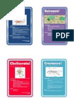 Invertebrate Cards