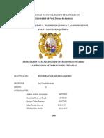 Informe de Fuidizacion Completo