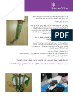 Khat Fact Sheet - Arabic