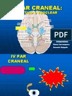 IV Par Craneal