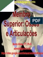 Membro Superior Ossos e Articulações