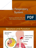 Respiratory Ppt Sp 09
