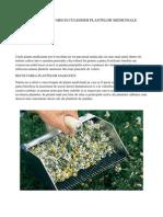 ABC-ul Cultivarii Si Culegelor Plantelor Medicinale - Banu Ioana