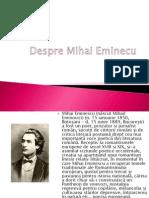 Despre Mihai Eminecu