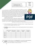Ficha de Funcionamento Da Lingua II