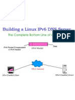 Bottom line of Building a Linux IPv6 DNS Server Project