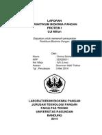 Laporan Praktikum Biokimia Protein I ( Uji Millon)