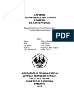 Laporan Praktikum Biokimia Protein I ( Uji Xantoprotein)