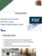 Panosteítis