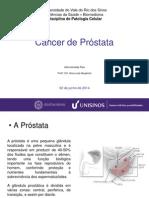 Patologia - Câncer de Próstata