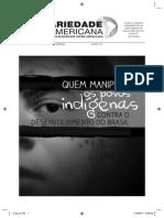 Quem manipula os povos indígenas contra o desenvolvimento do Brasil - Autores