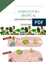 PONENCIA Ecologia Tropical UDEC 1