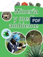 Mineria y Medio Ambiente[1]