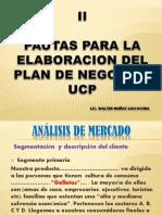 Pautas II Para Plan de Negocios-II