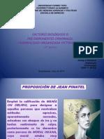 presentación tema 9.pptx