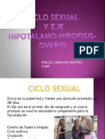 ciclo sexual.pptx
