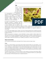 Microorganismo.pdf 4
